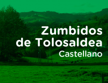 tolosaldea_es